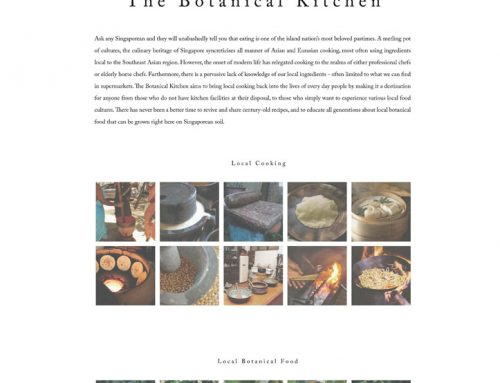 The Botanical Kitchen